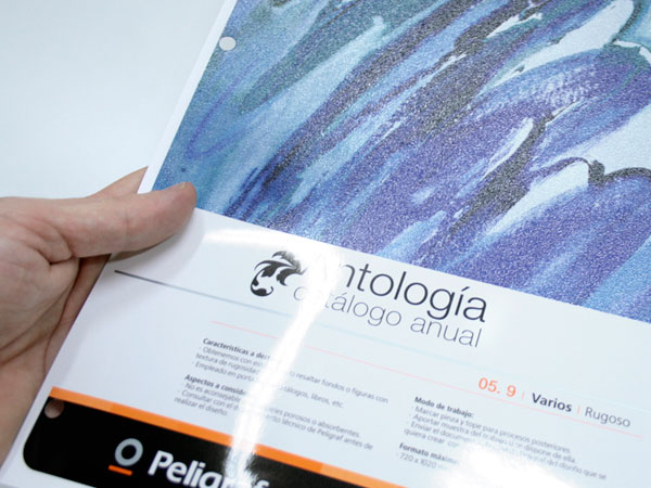 Peligraf. Design and management of new tabs in services' catalogue